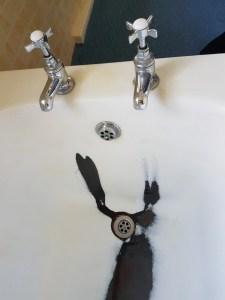 How to clean enamel bath? 2